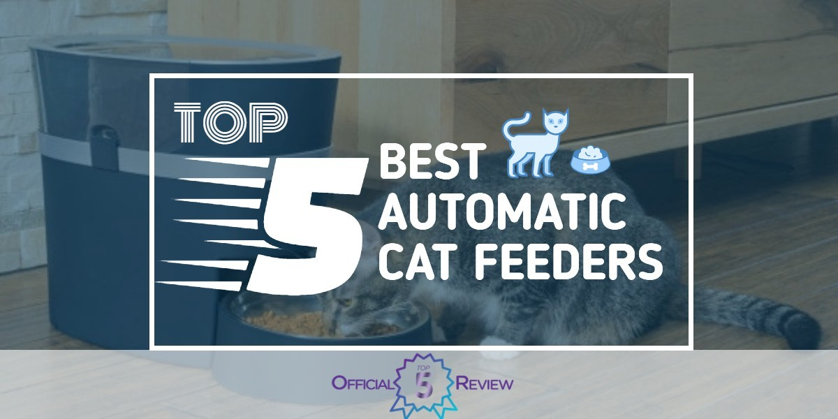 Automatic Cat Feeders - Featured Image