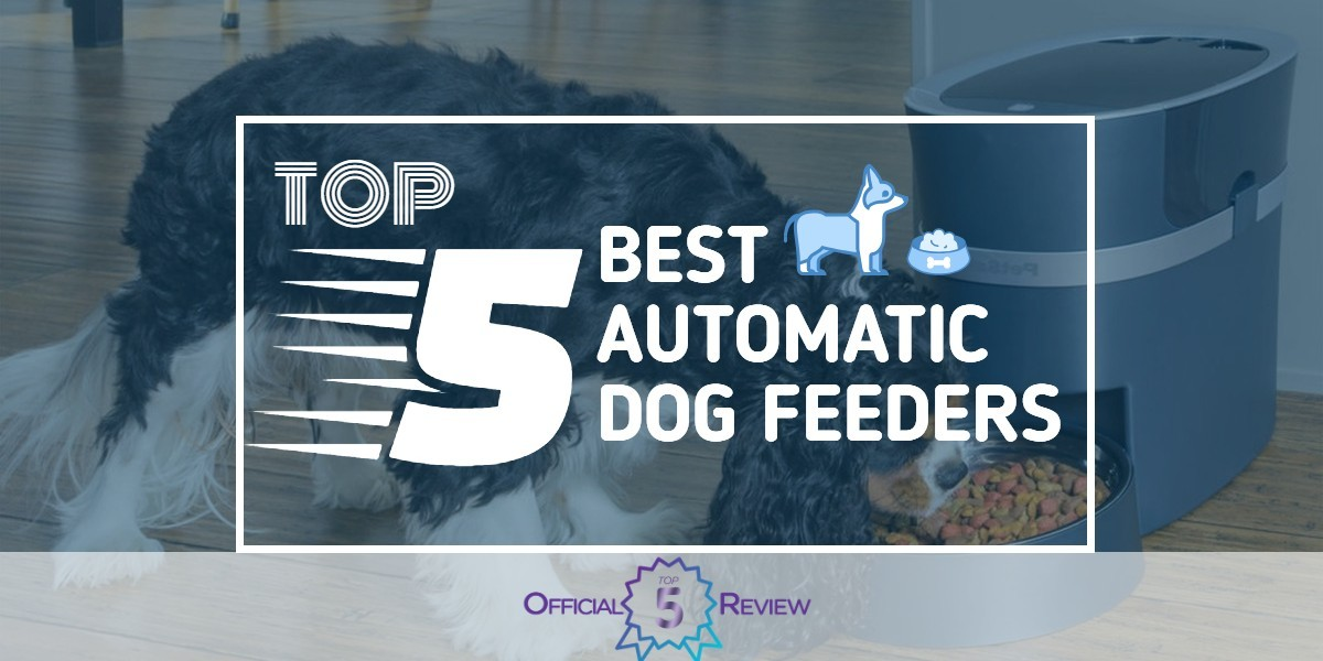 Automatic Dog Feeders - Featured Image