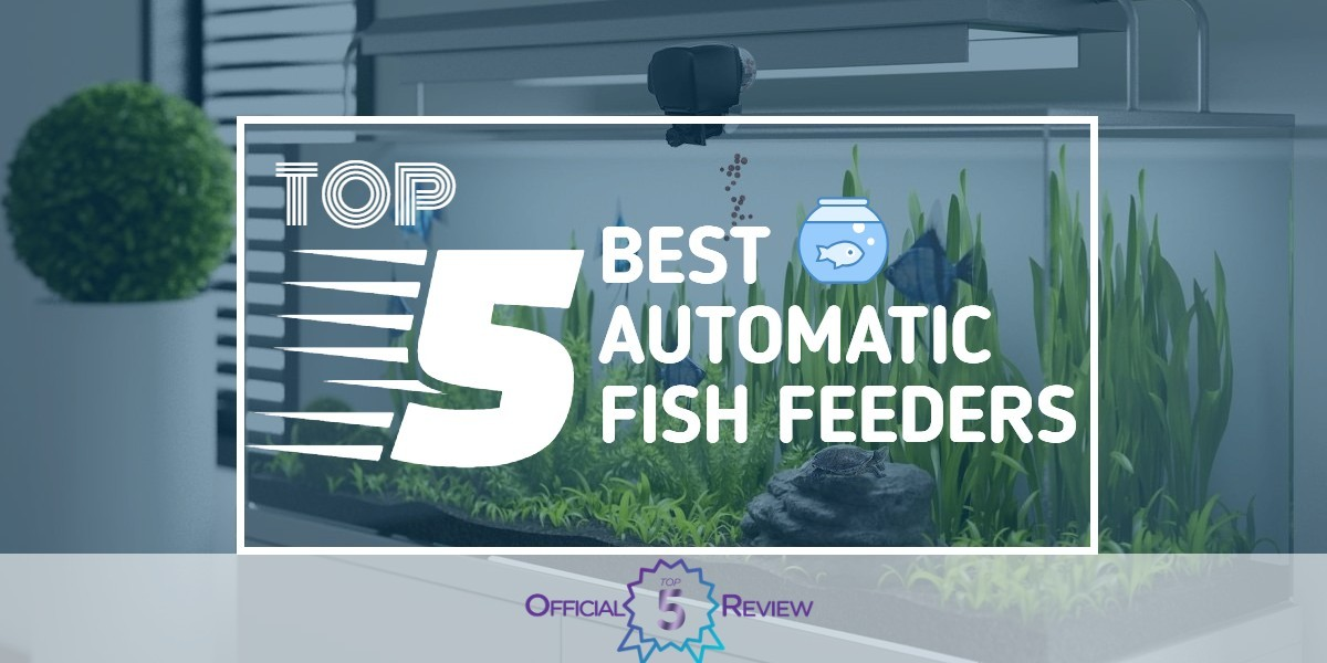 Automatic Fish Feeders - Featured Image