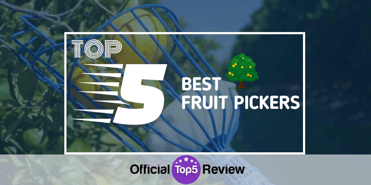 Fruit Pickers - Featured Image