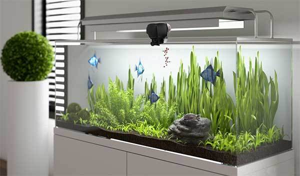 PROCHE Digital Automatic Fish Feeder Aquarium Fish