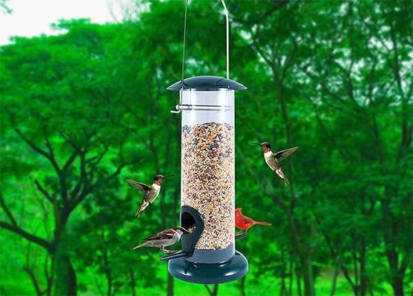 Nibble Weather Proof Anti-Bacterial Bird Feeder