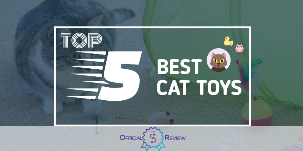 Cat Toys - Featured Image