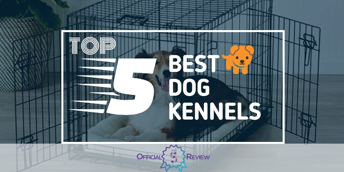 Dog Kennels - Featured Image