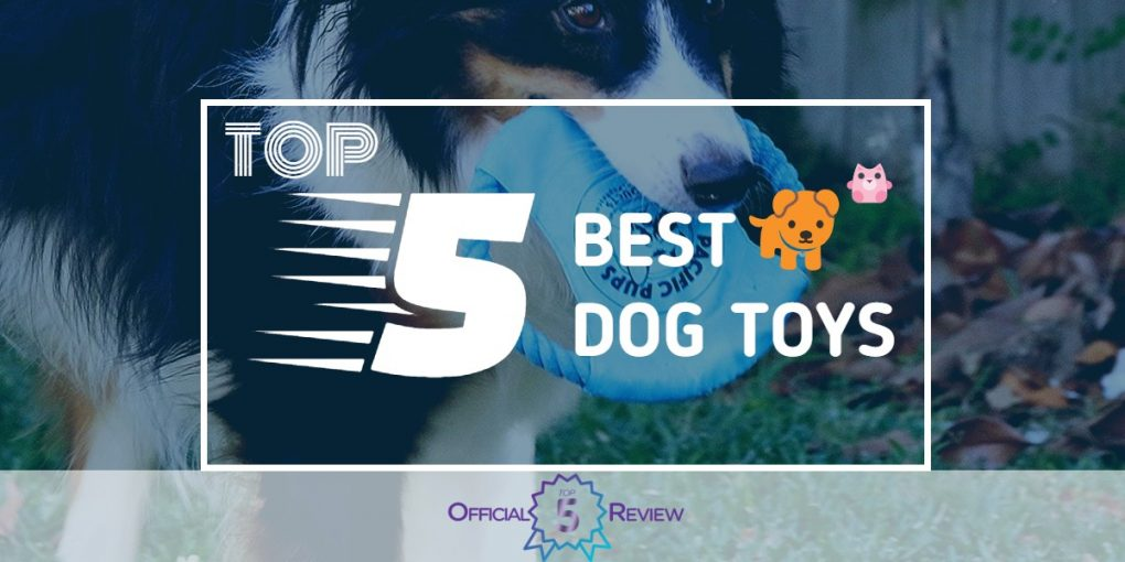 Dog Toys - Featured Image