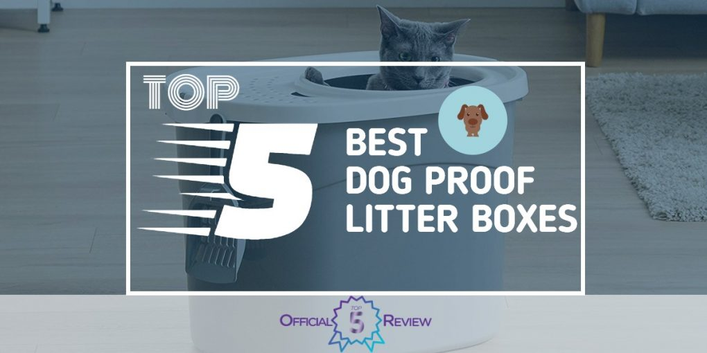 Dog Proof Litter Boxes - Featured Image