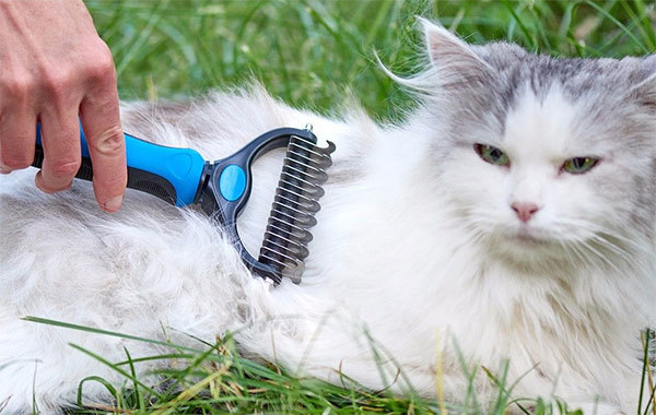 Pet Grooming Tool by Pat Your Pet