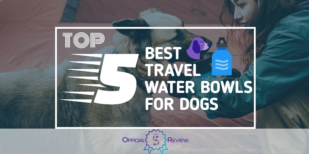 Travel Water Bowls for Dogs - Featured Image
