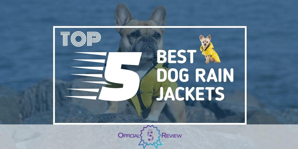 Dog Rain Jackets - Featured Image
