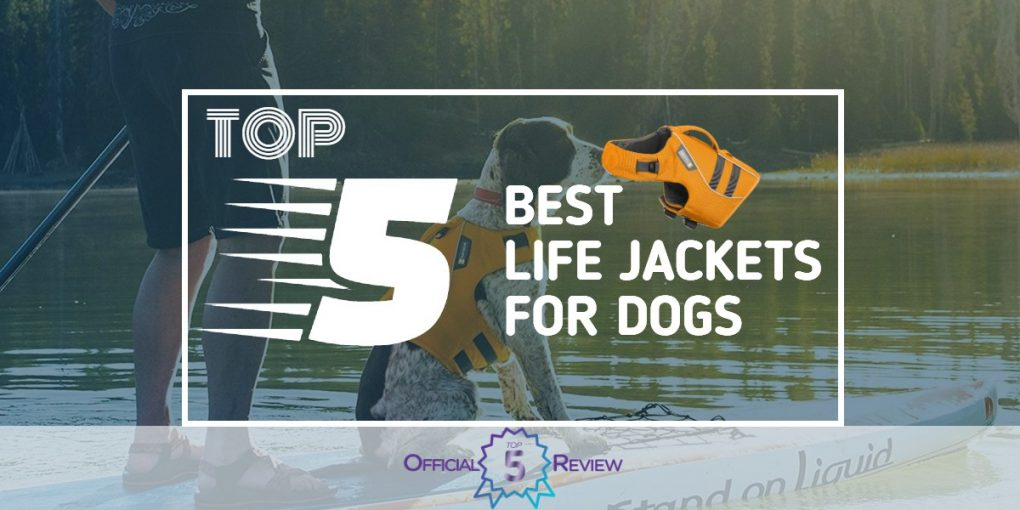 Life Jackets For Dogs - Featured Image