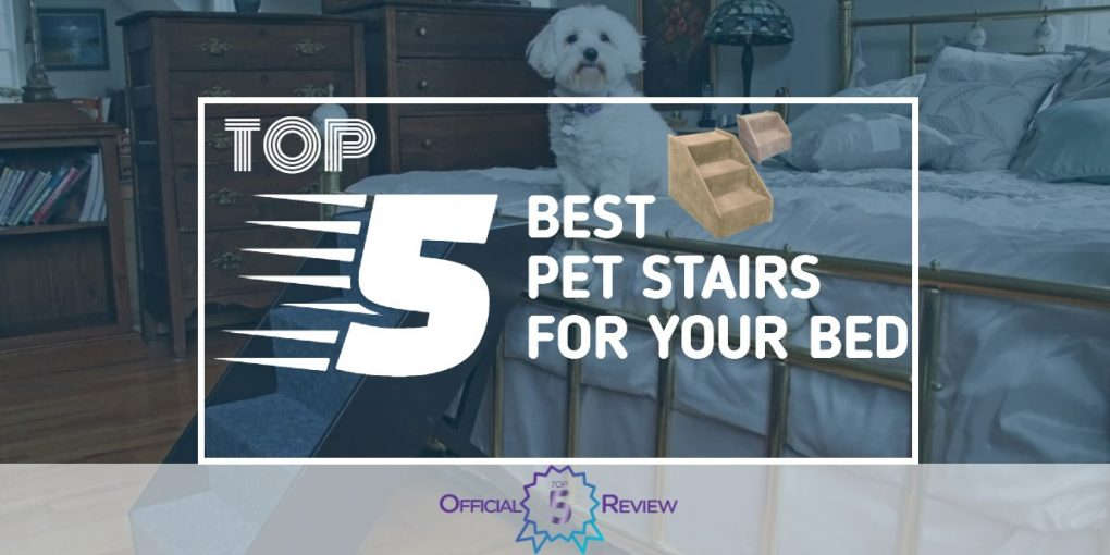 Pet Stairs for Your Bed - Featured Image