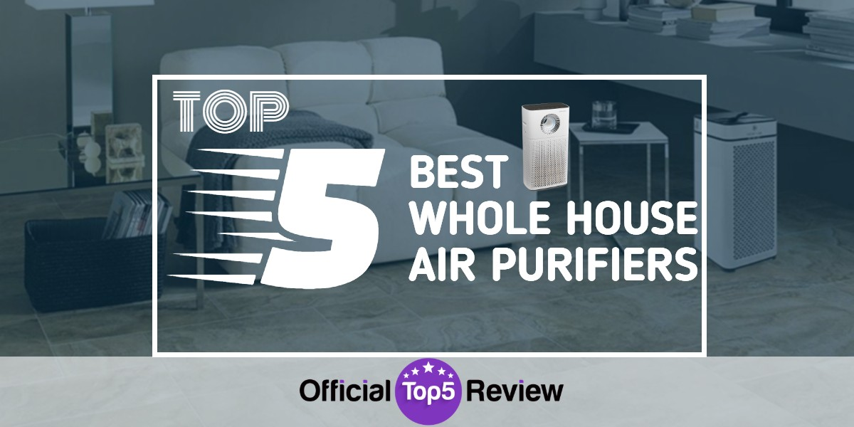 Whole House Air Purifiers - Featured Image